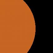 Endowments Orange Circle, Plain Image, No text